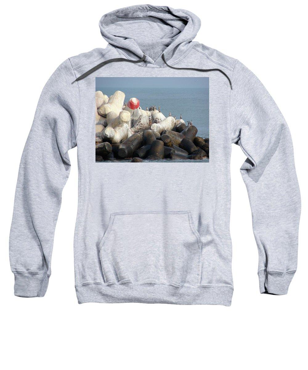 Arica Sweatshirt featuring the photograph Arica Chile Sea Life by Brett Winn