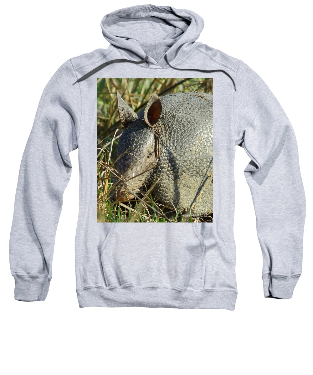 Animal Sweatshirt featuring the photograph Armadillo By Morning by Robert Frederick