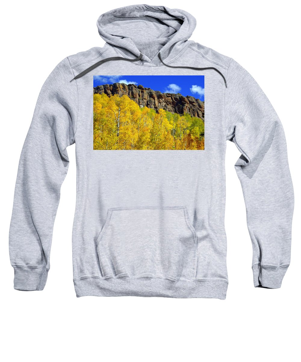 Fall Colors Sweatshirt featuring the photograph Aspen Glory by Marty Koch