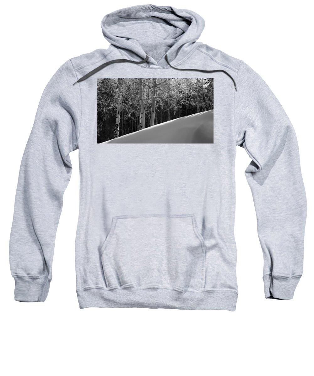 Colorado Sweatshirt featuring the photograph Aspencade by Skip Hunt