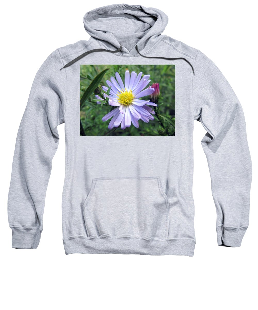 Sweatshirt featuring the photograph Aster by Vesna Martinjak
