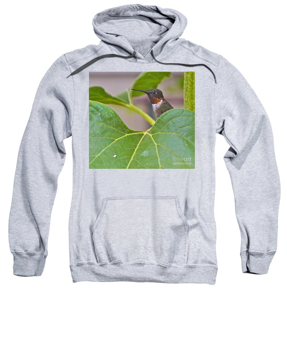Humming Bird Sweatshirt featuring the photograph At Attention by Robert Pearson