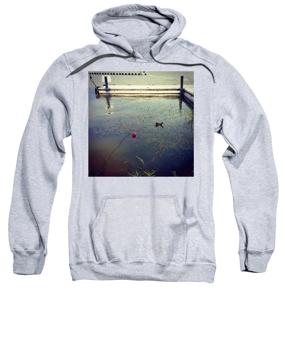 Duck Sweatshirt featuring the photograph At The Dock by Kimberly Reeger