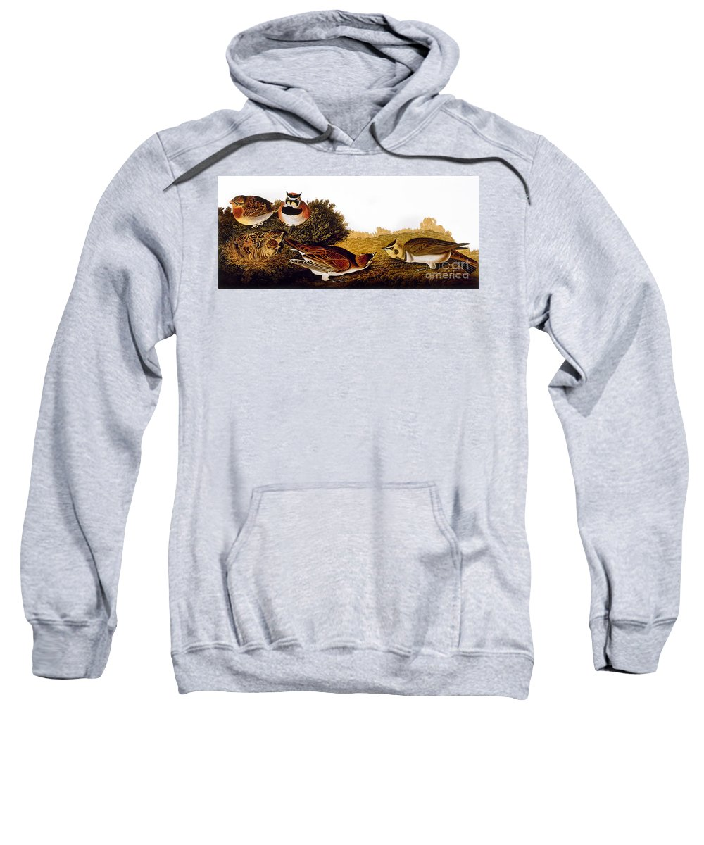 1838 Sweatshirt featuring the photograph Audubon Lark by John James Audubon