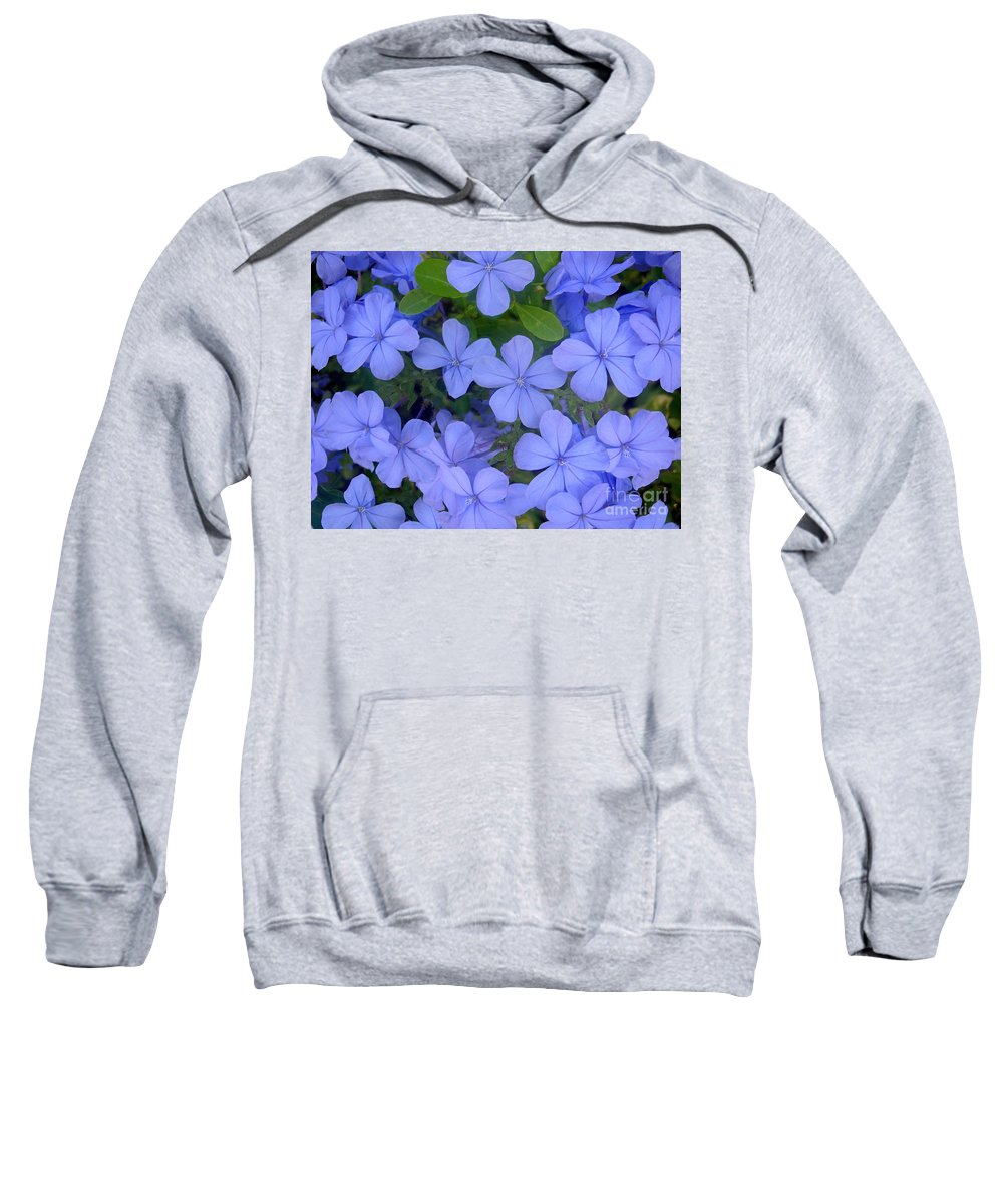 Nature Sweatshirt featuring the photograph Autumn Blues by Lucyna A M Green
