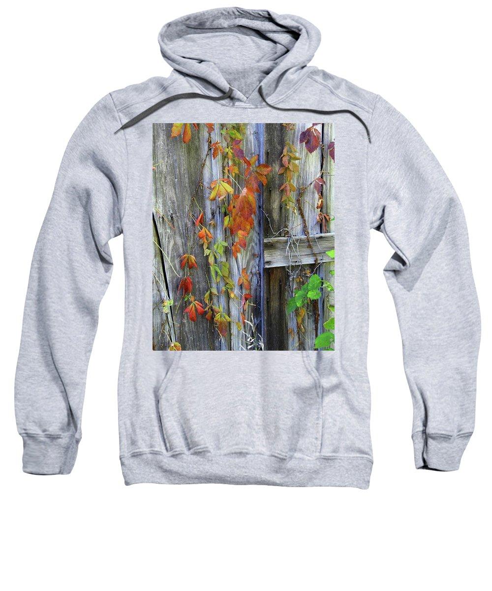 Sweatshirt featuring the photograph Autumn Collage by Herbert L Fields Jr