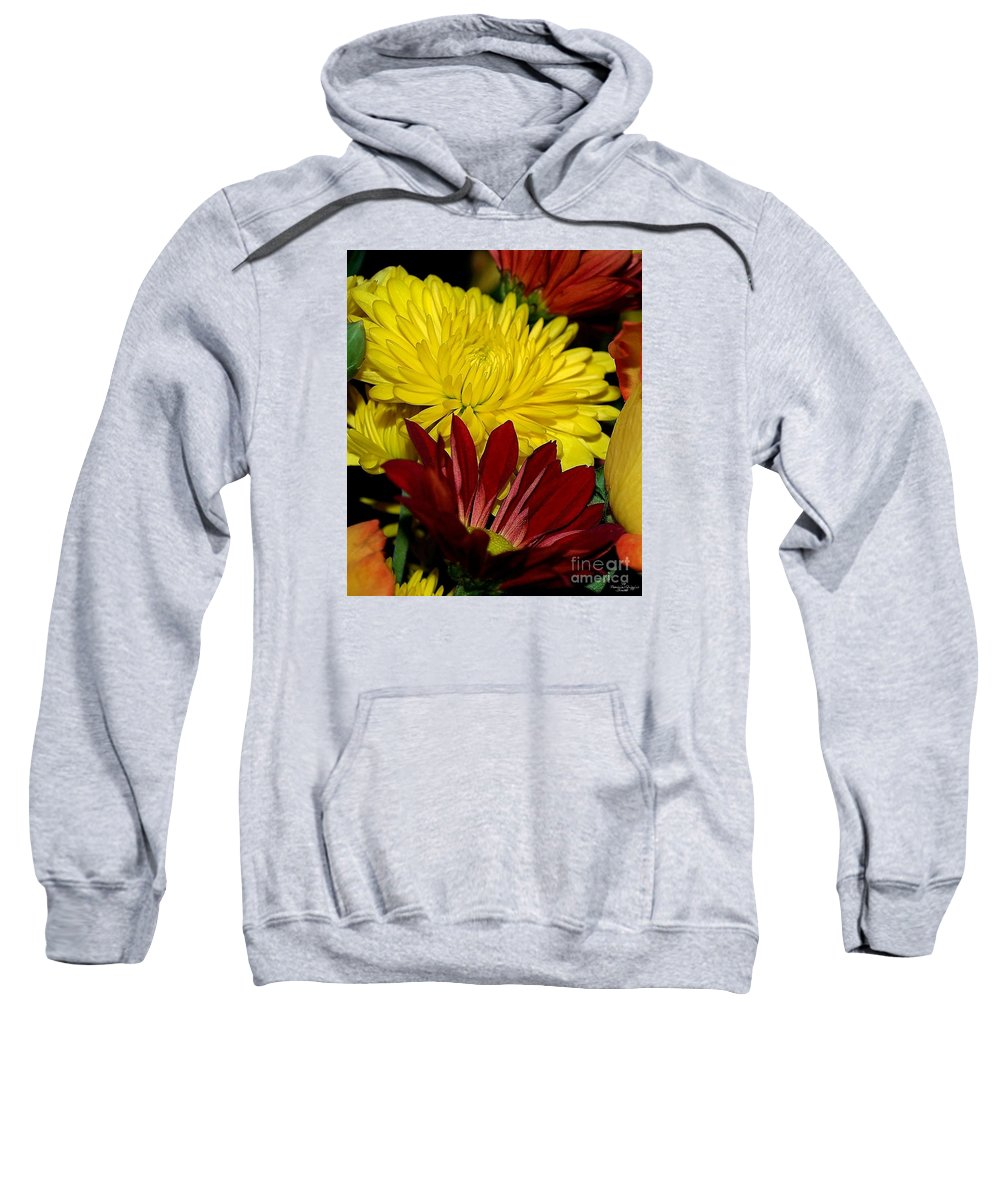 Chrysanthemum Photography Sweatshirt featuring the photograph Autumn Colors by Patricia Griffin Brett