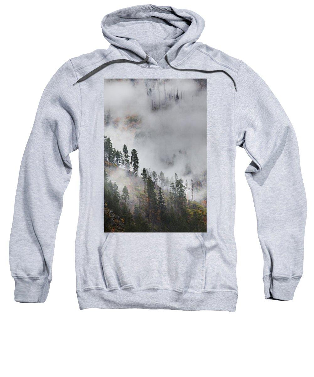 Autumn Sweatshirt featuring the photograph Autumn Fog by Eggers Photography