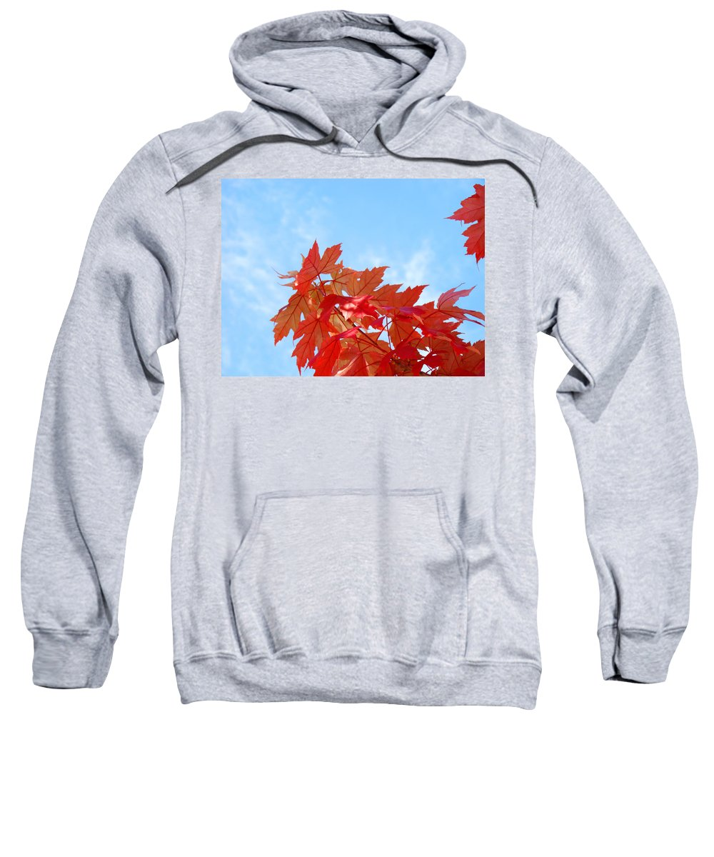 Autumn Sweatshirt featuring the photograph Autumn Landscape Fall Leaves Blue Sky White Clouds Baslee by Baslee Troutman