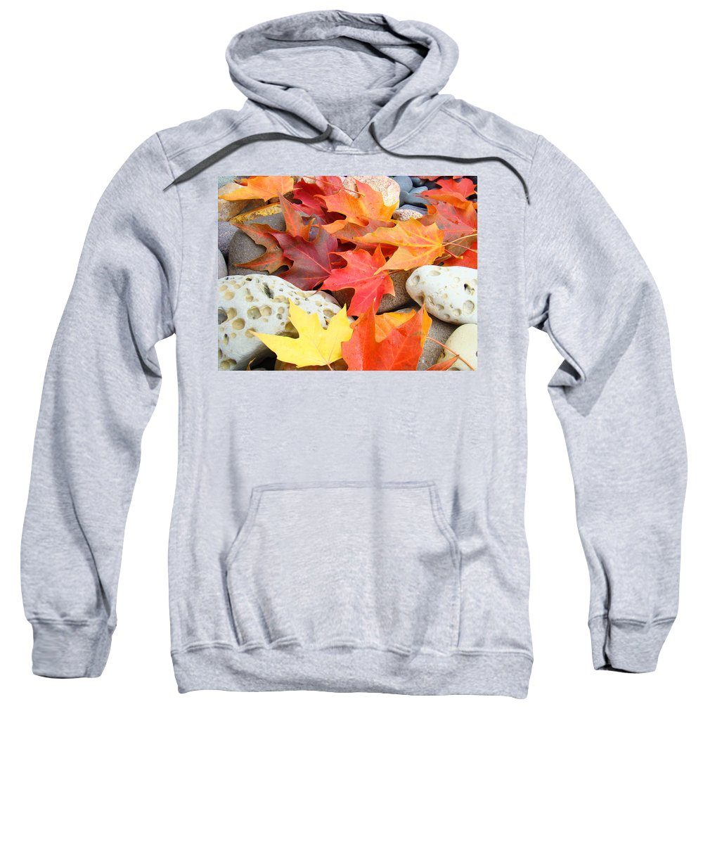 Autumn Sweatshirt featuring the photograph Autumn Leaves Art Print Coastal Fossil Rocks Baslee Troutman by Baslee Troutman