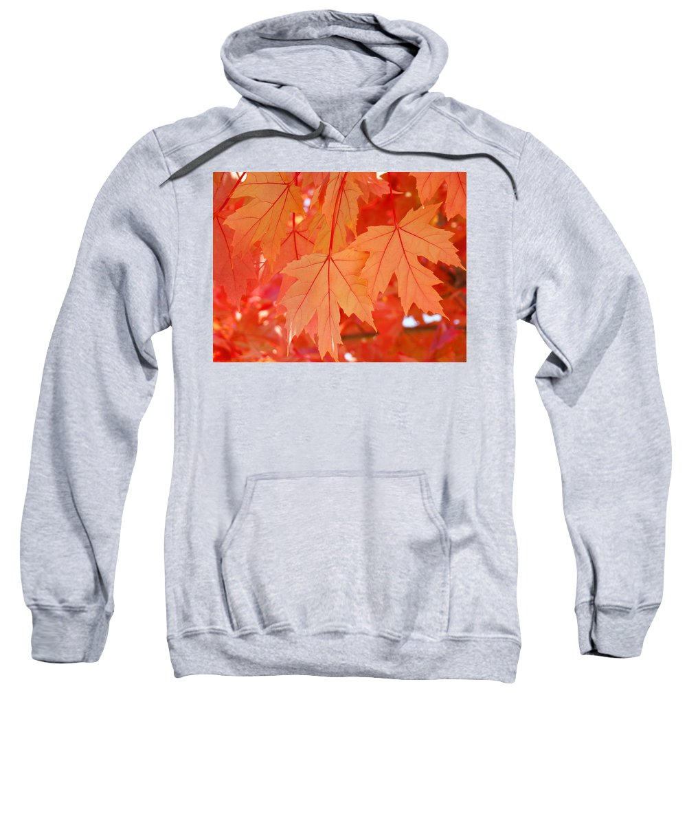 Nature Sweatshirt featuring the photograph Autumn Leaves Art Prints Orange Fall Leaves Baslee Troutman by Baslee Troutman