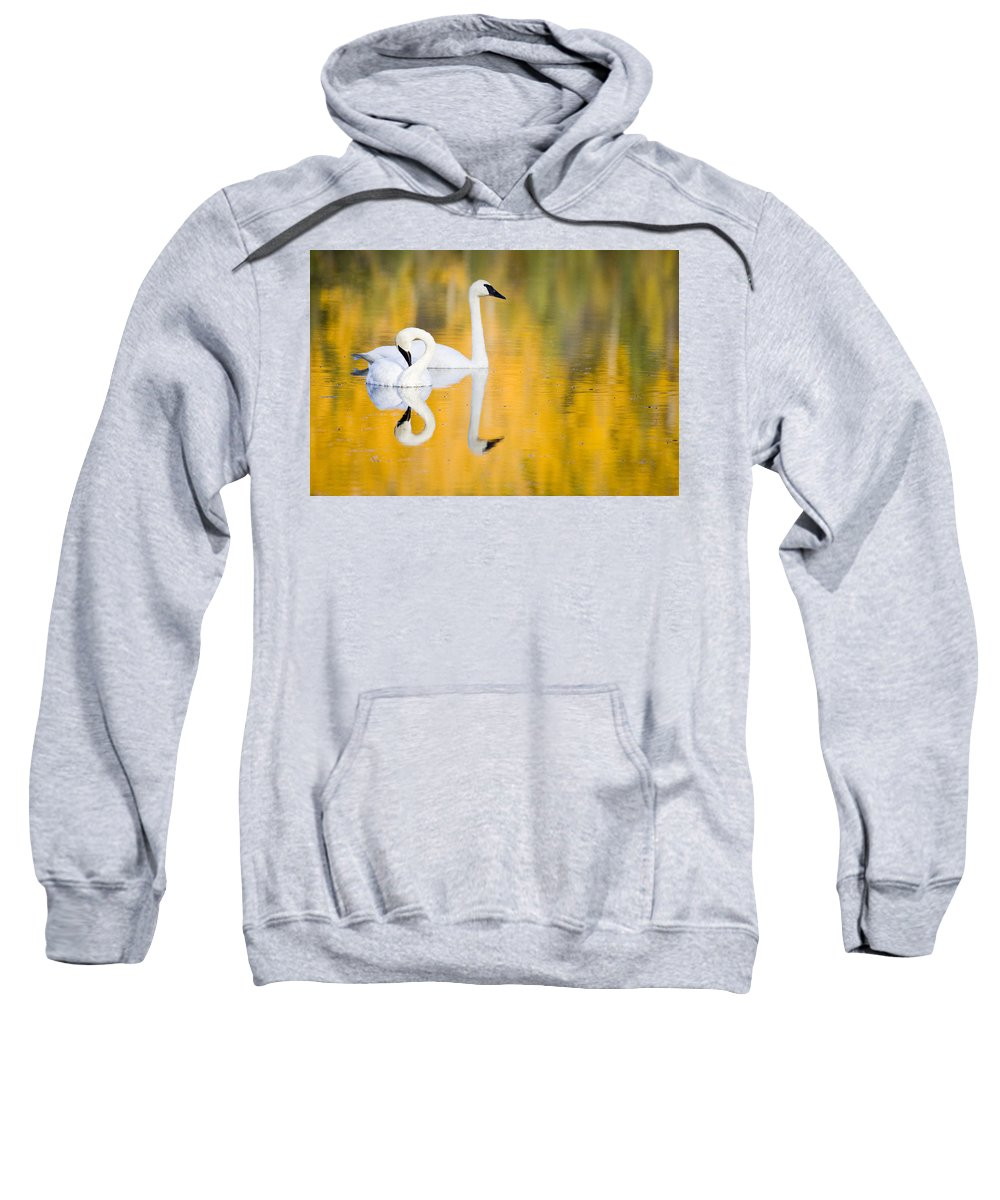 Alaska Sweatshirt featuring the photograph Autumn Reflections by Eggers Photography
