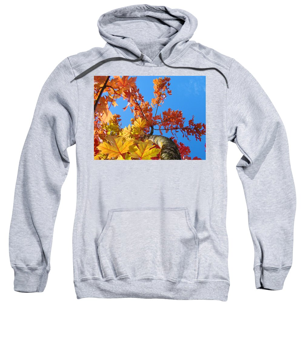 Autumn Sweatshirt featuring the photograph Autumn Trees Artwork Fall Leaves Blue Sky Baslee Troutman by Baslee Troutman