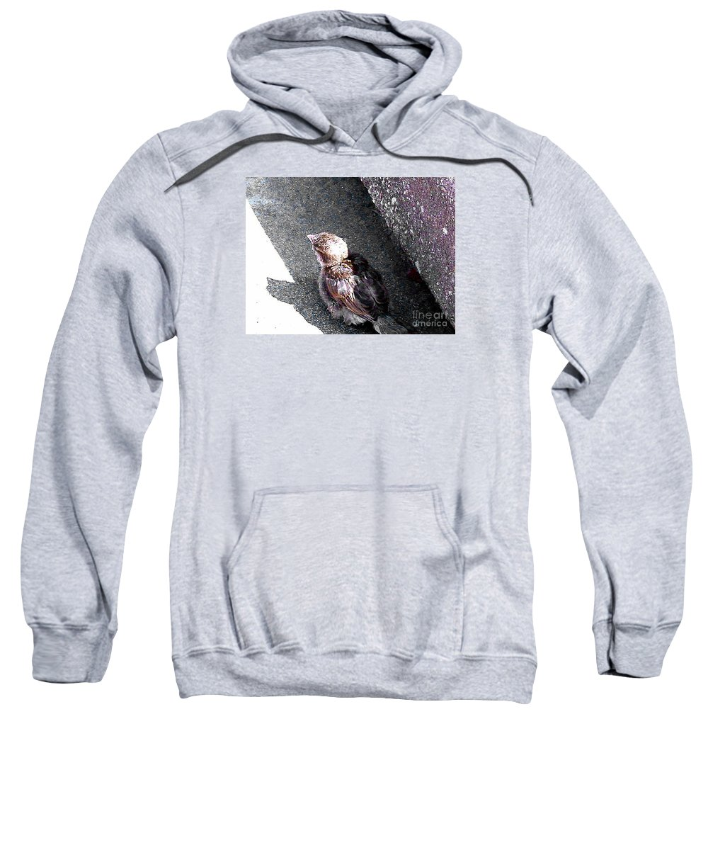 Bird Sweatshirt featuring the photograph Baby Bird - Toyoung To Fly by Merton Allen