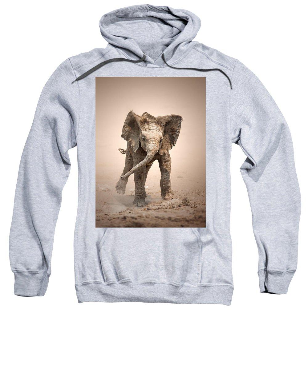 Elephant Sweatshirt featuring the photograph Baby Elephant Mock Charging by Johan Swanepoel