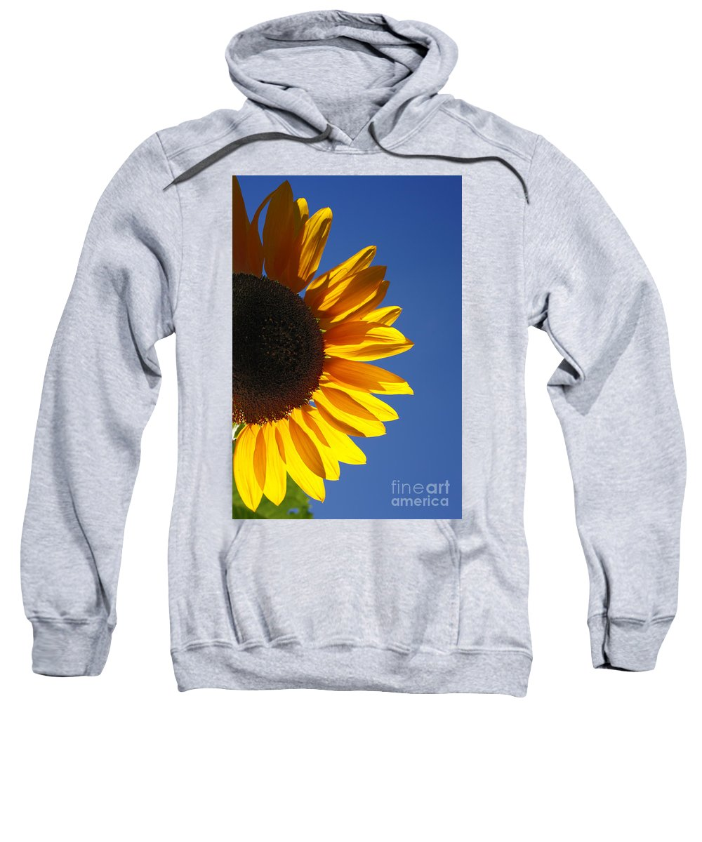 Back Light Sweatshirt featuring the photograph Backlit Sunflower by Gaspar Avila