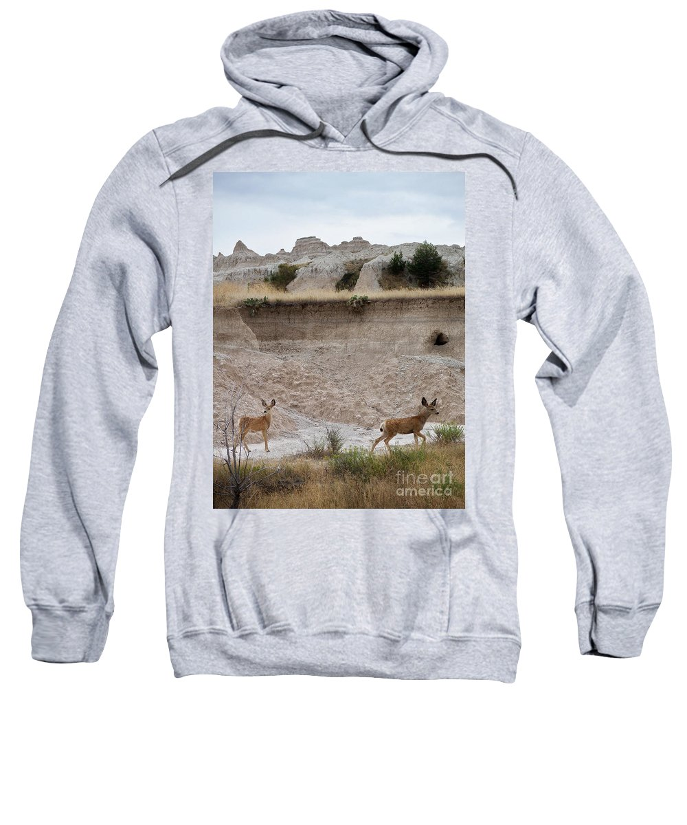 Badlands Sweatshirt featuring the photograph Badlands Deer Sd by Tommy Anderson