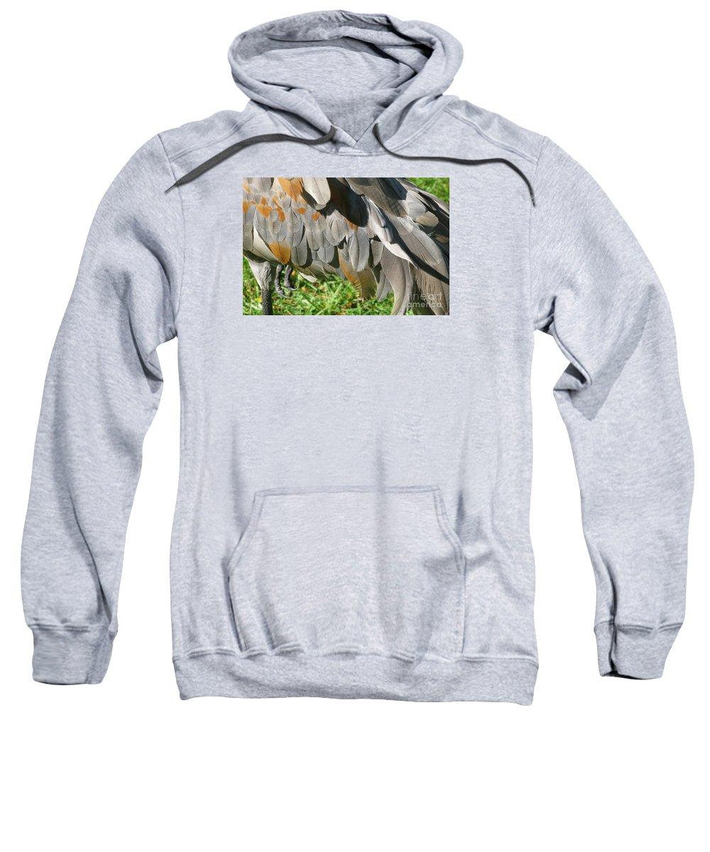 Bird Sweatshirt featuring the photograph Balancing Act by Ann Horn