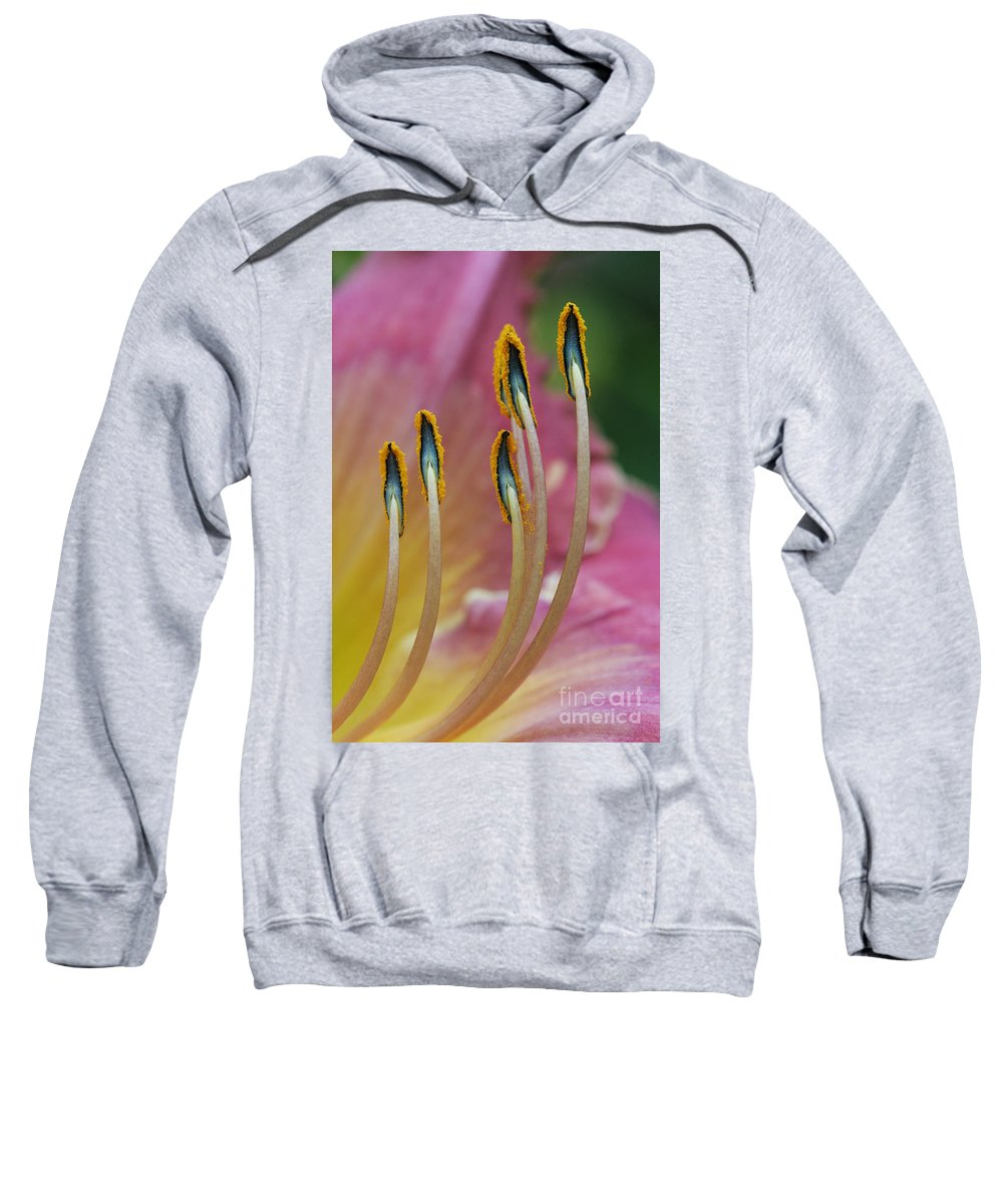 Daylily Sweatshirt featuring the photograph Ballerina Slippers by Judy Whitton