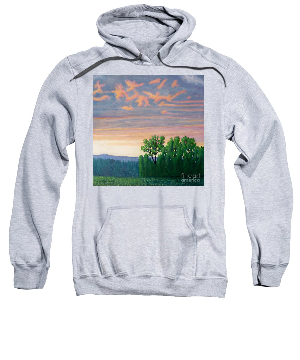 Landscape Sweatshirt featuring the painting Balsa Road by Brian Commerford