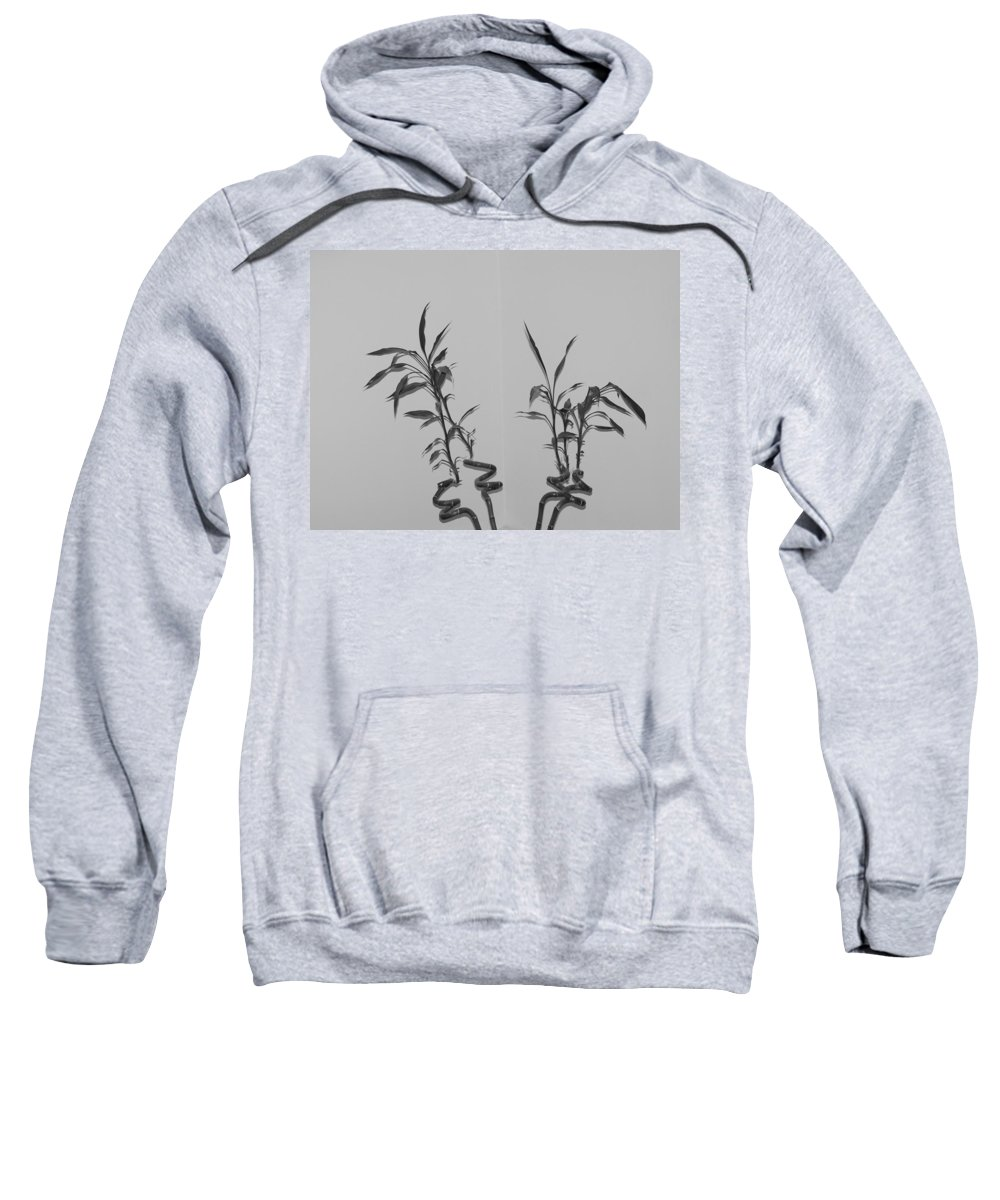 Black And White Sweatshirt featuring the photograph Bamboo Shutes by Rob Hans