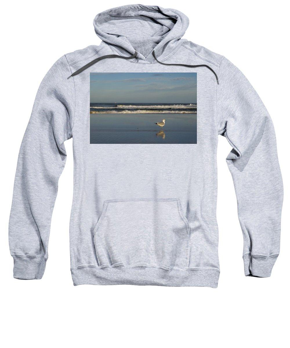 Sea Ocean Gull Bird Beach Reflection Water Wave Sky Sweatshirt featuring the photograph Beach Patrol by Andrei Shliakhau