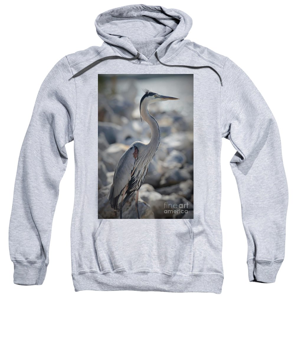 Heron Sweatshirt featuring the photograph Beach Patrol by Pamela Blizzard