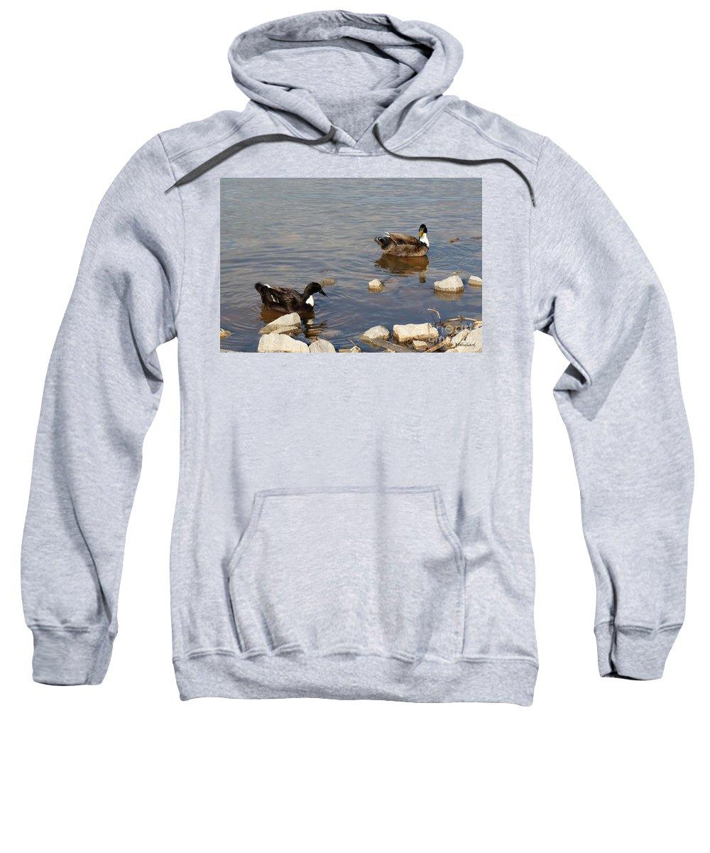 Seascape Sweatshirt featuring the photograph Beautiful Ducks by Todd Blanchard