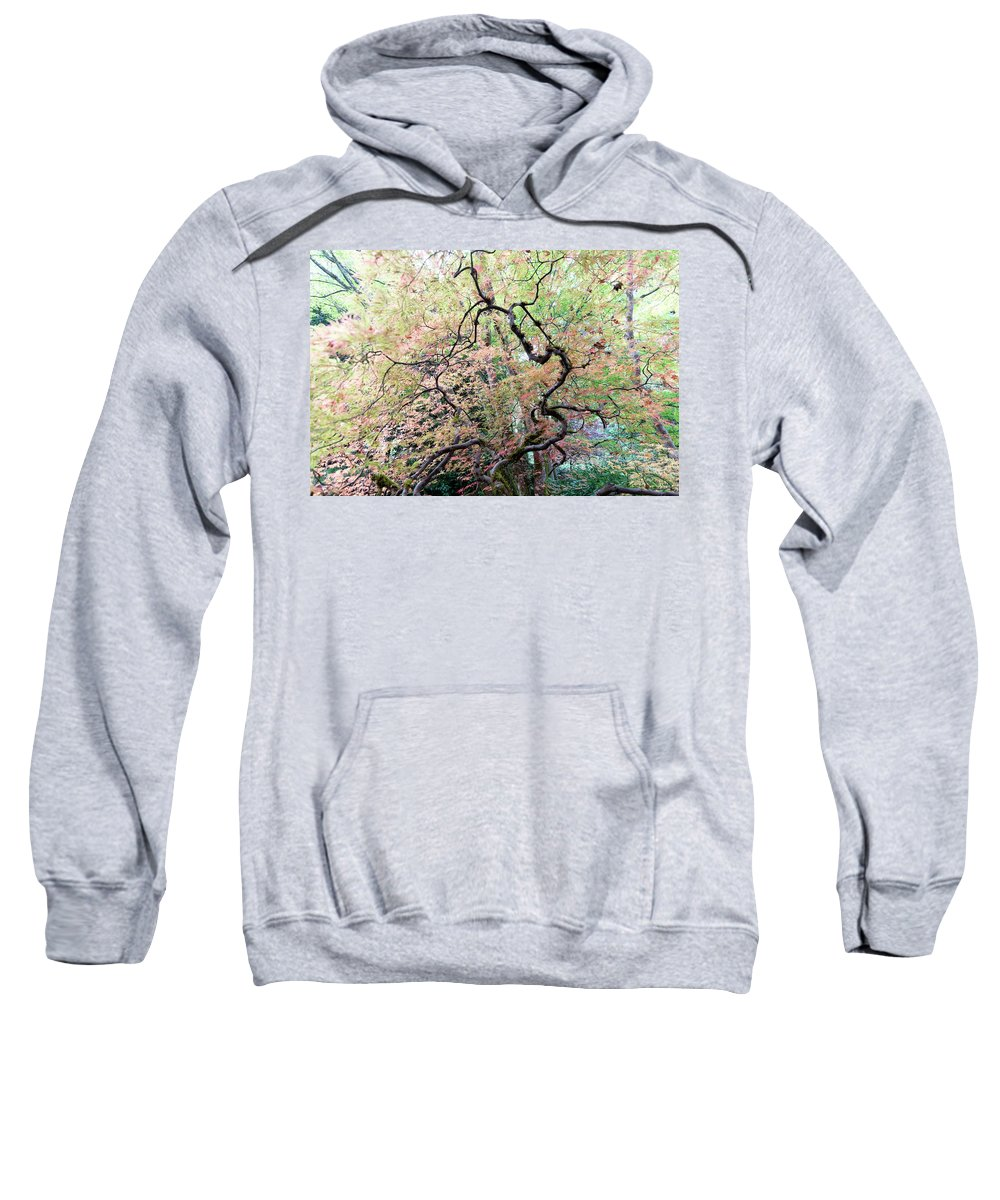 Outdoor Sweatshirt featuring the photograph Beautiful Japanese Garden,butchart Gardens,victoria,canada 1. by Andrew Kim