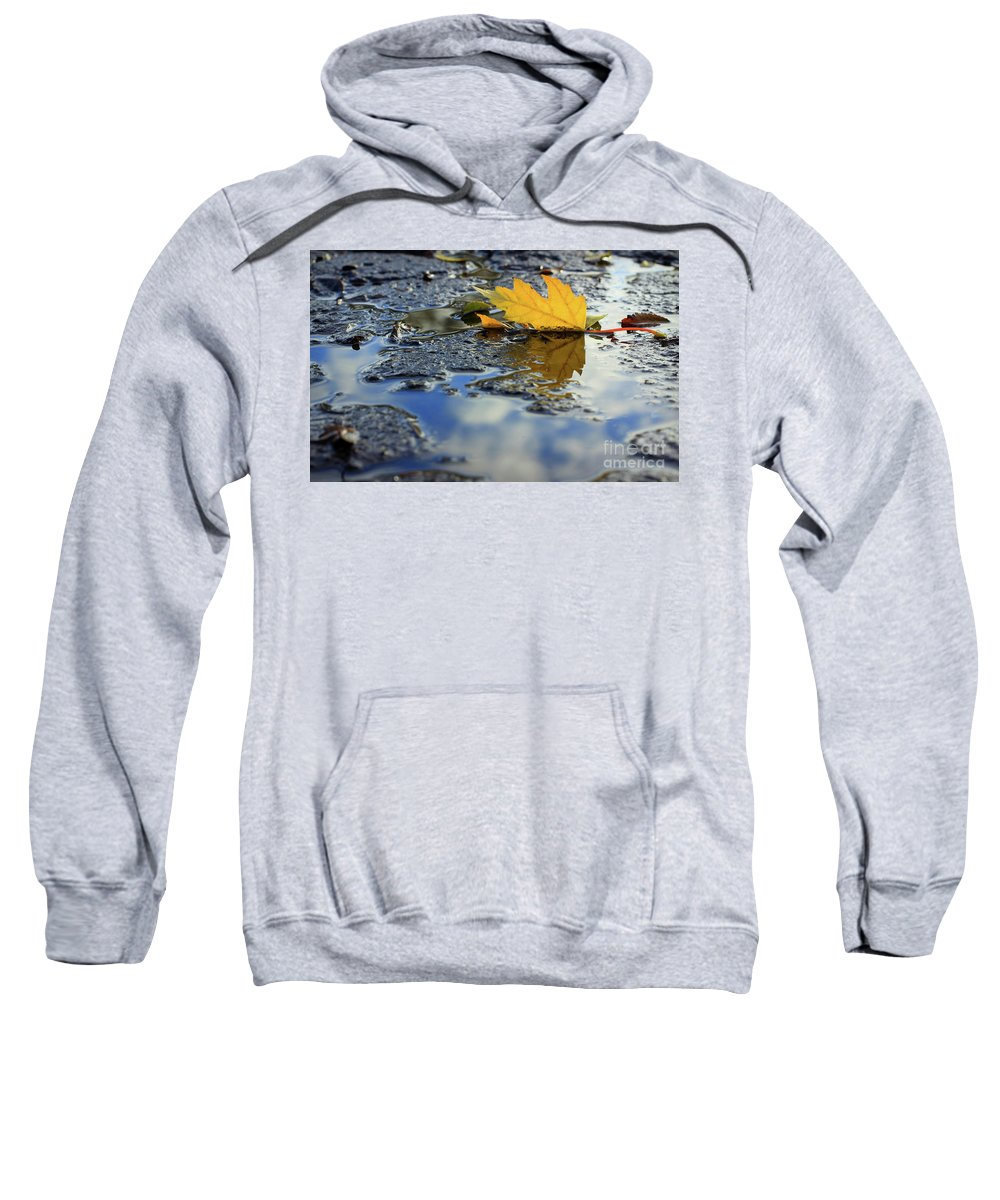 Leaf Sweatshirt featuring the photograph Beauty Above And Below Me by Viviana Nadowski