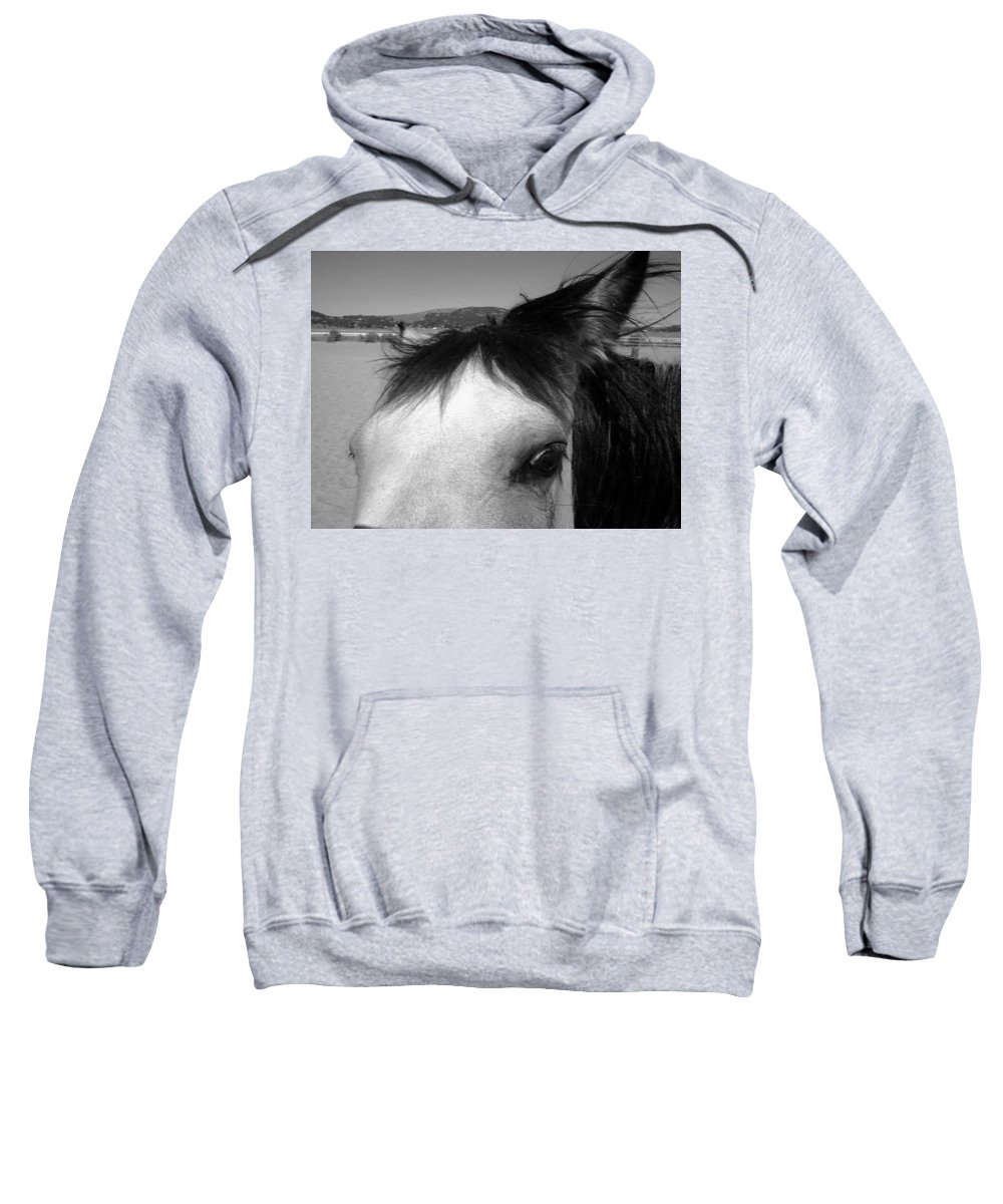 Horse Sweatshirt featuring the photograph Beauty Is In The Eye... by Jamey Balester