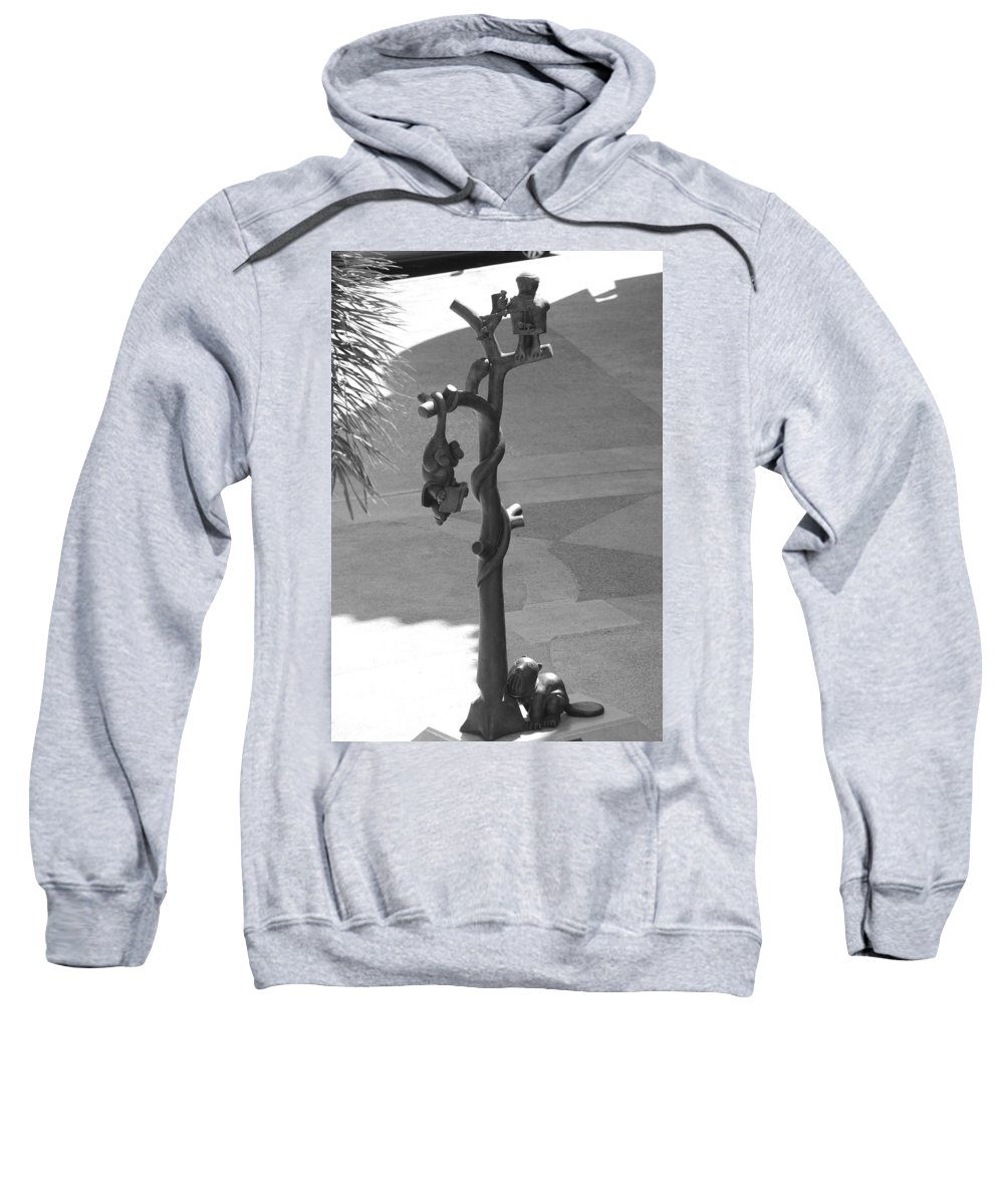Black And White Sweatshirt featuring the photograph Beavers Bats And Squirrels by Rob Hans