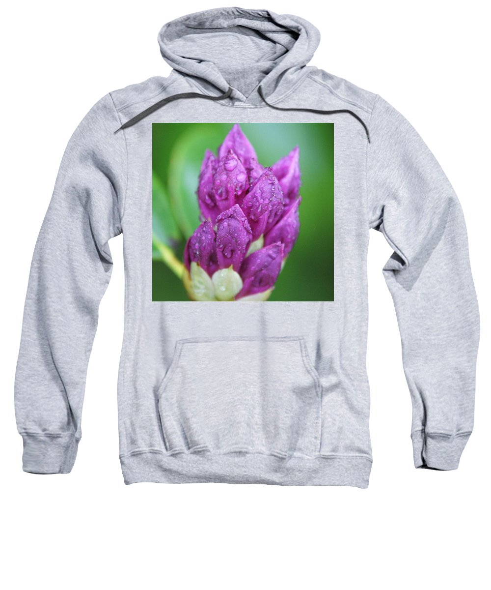 Flower Sweatshirt featuring the photograph Bedazzled by Alex Grichenko