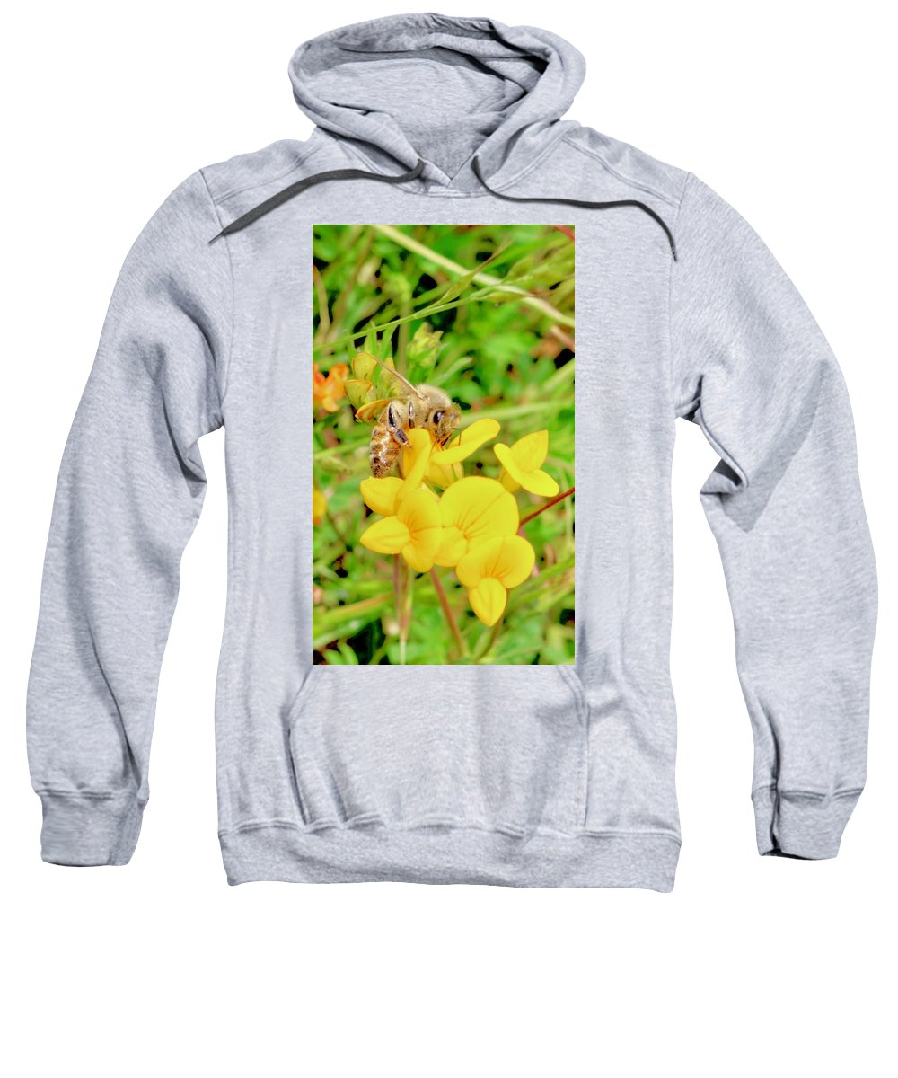 Bee Sweatshirt featuring the photograph Bee by Erin Finnegan