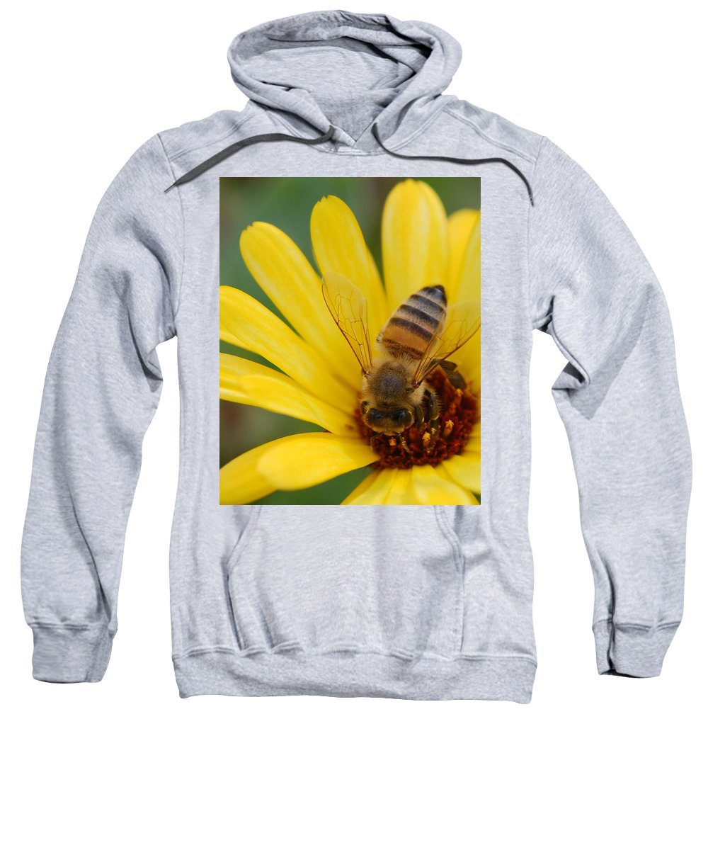 Bee Sweatshirt featuring the photograph Bee On Flower by Amy Fose