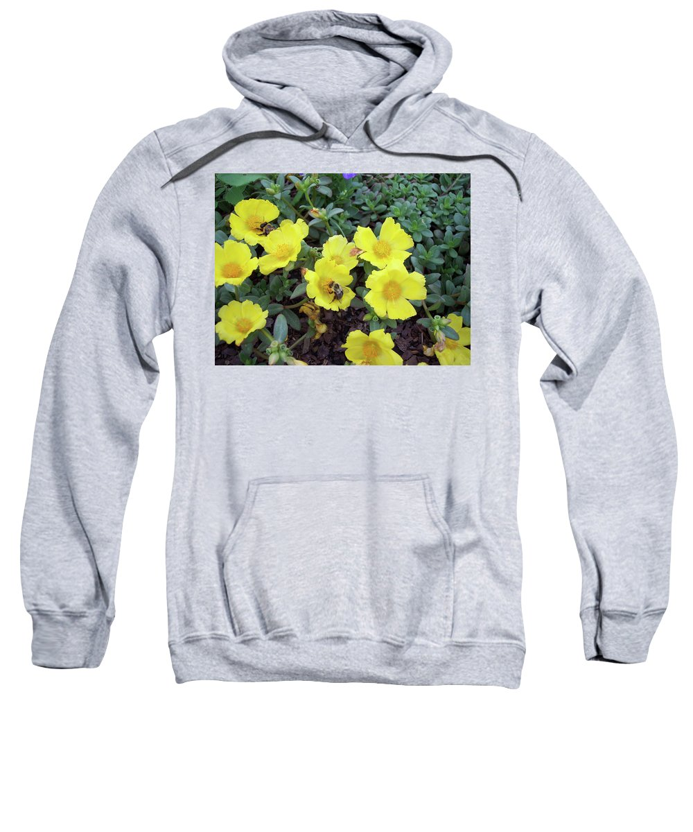 Yellow Sweatshirt featuring the photograph Bees If You Please by Cathy Klopfenstein