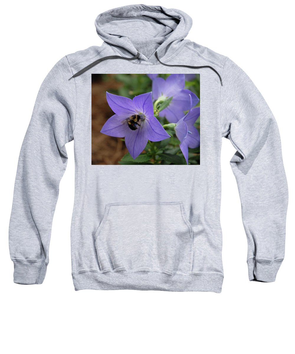 Bellflower Sweatshirt featuring the photograph Bellflower And Bee by Marie Hicks