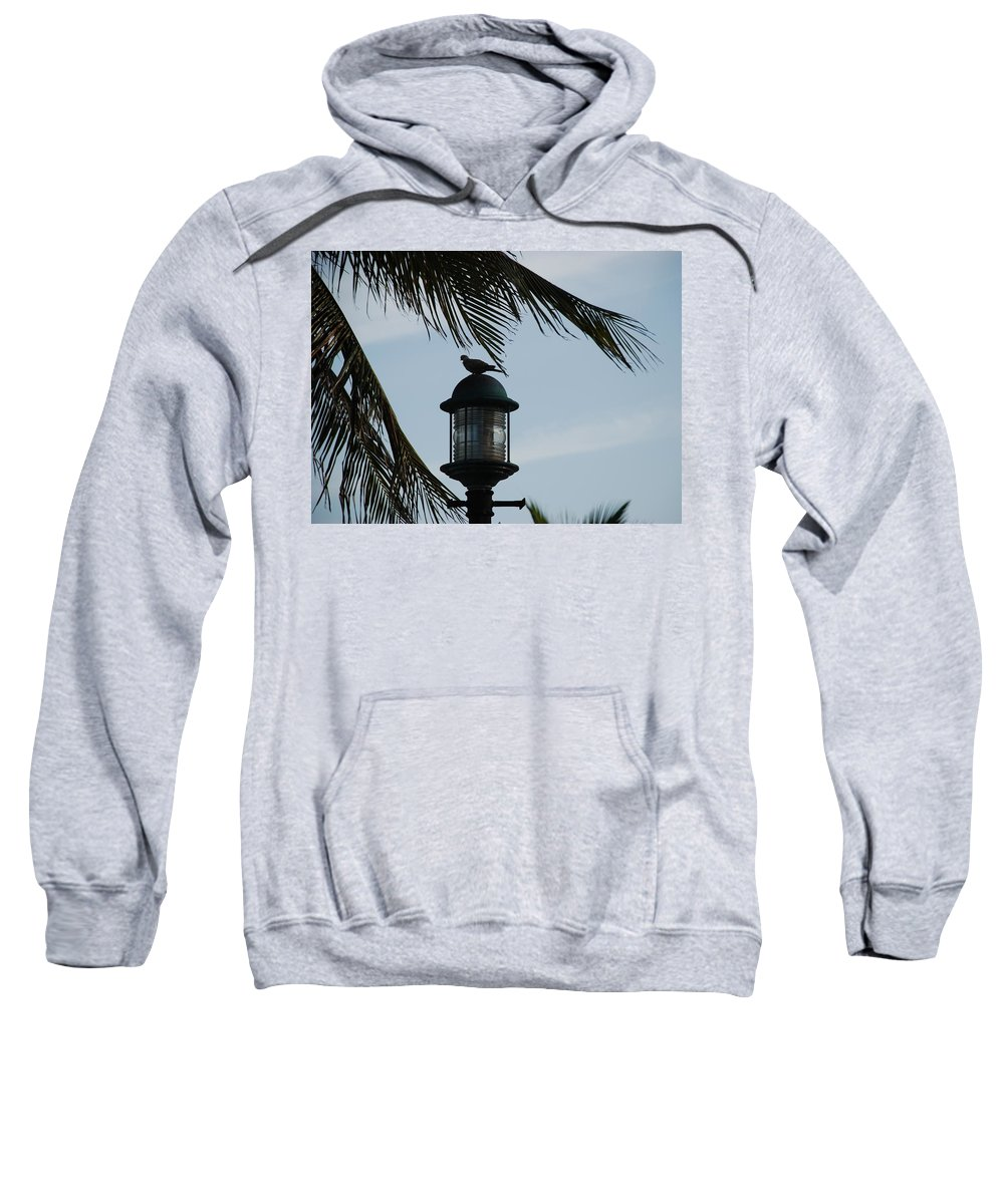 Lamp Post Sweatshirt featuring the photograph Bird On A Light by Rob Hans
