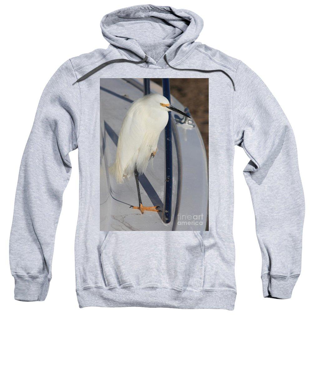 Sweatshirt featuring the greeting card Bird On Boat by Carol Groenen