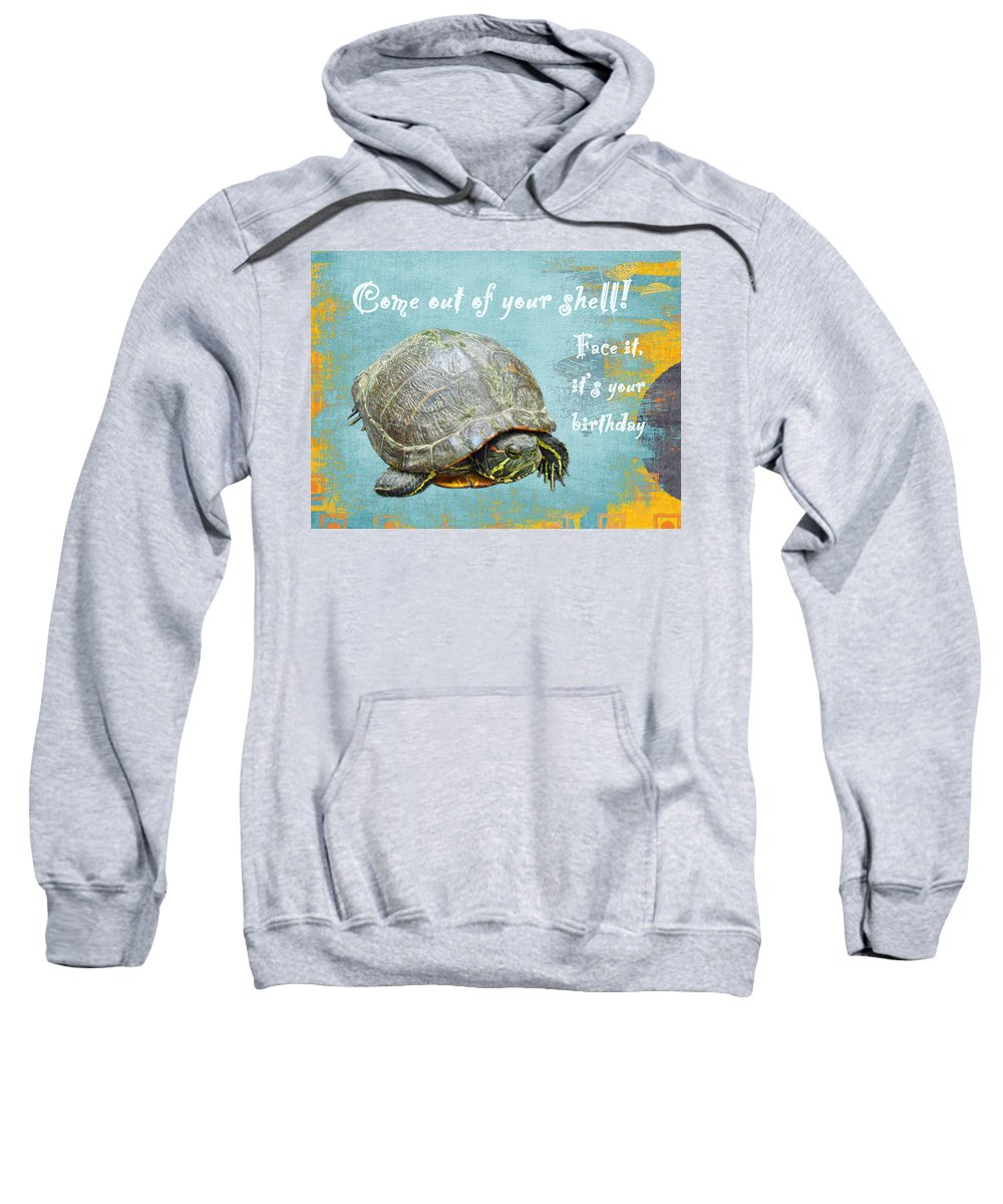Birthday Sweatshirt featuring the photograph Birthday Card - Painted Turtle by Mother Nature