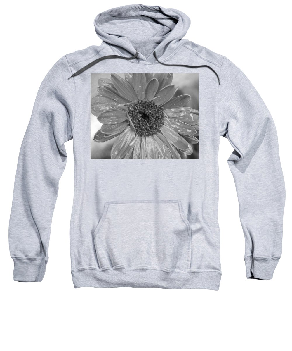 Gerber Daisy Sweatshirt featuring the photograph Black And White Gerbera Daisy by Amy Fose