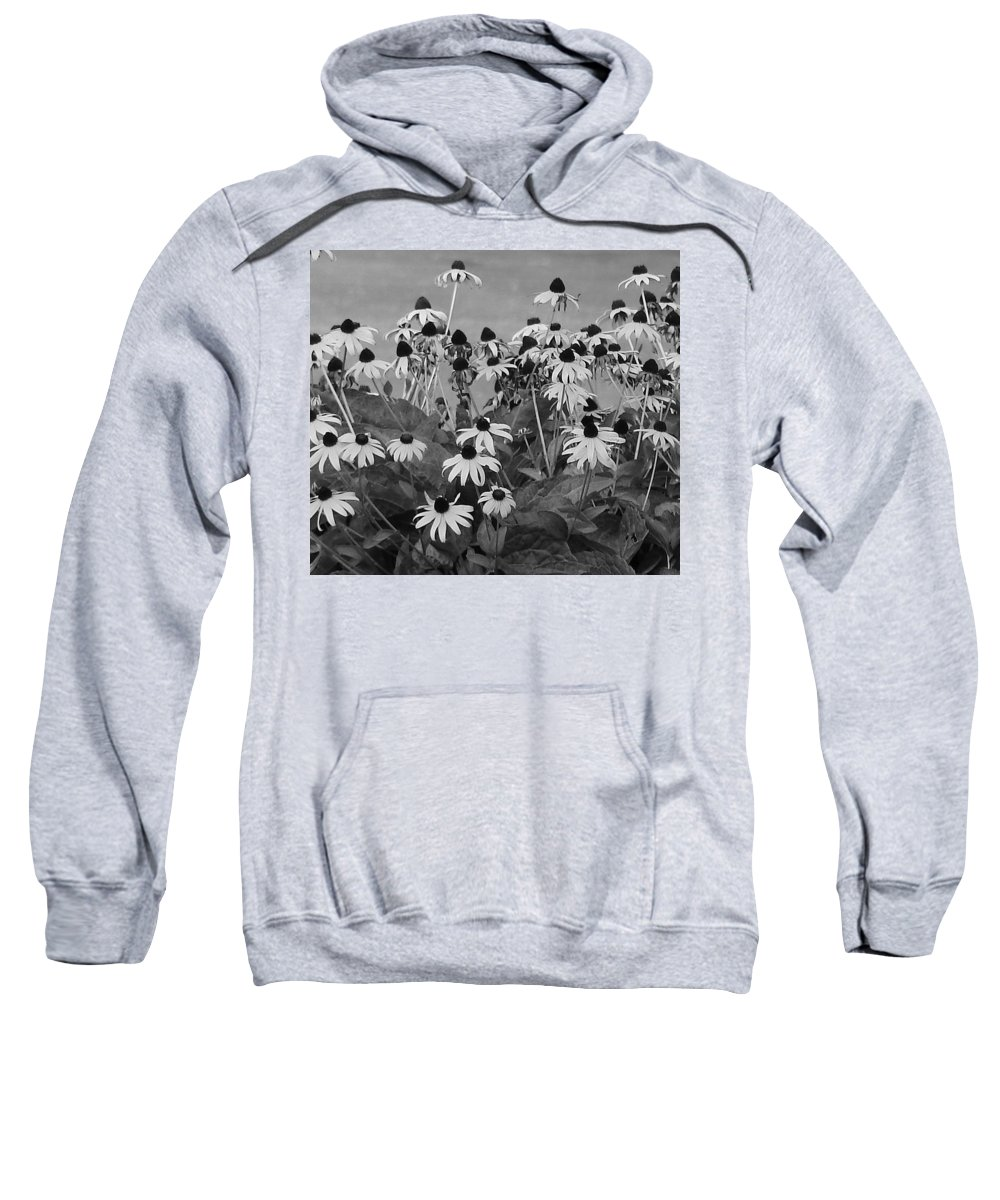 Sweatshirt featuring the photograph Black And White Susans by Luciana Seymour