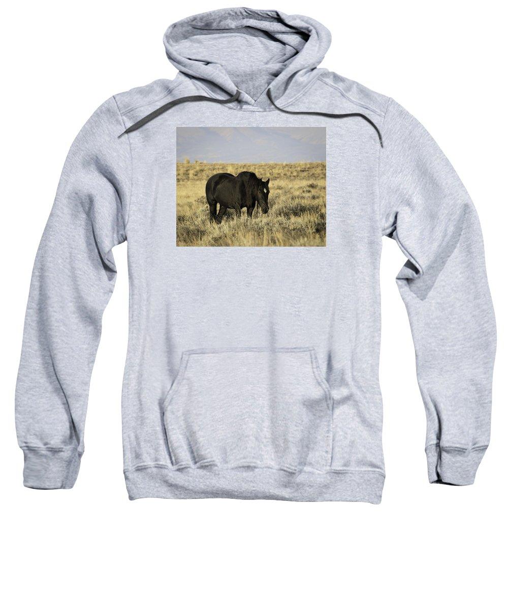 Wyoming Sweatshirt featuring the photograph Black Diamond by Elizabeth Eldridge