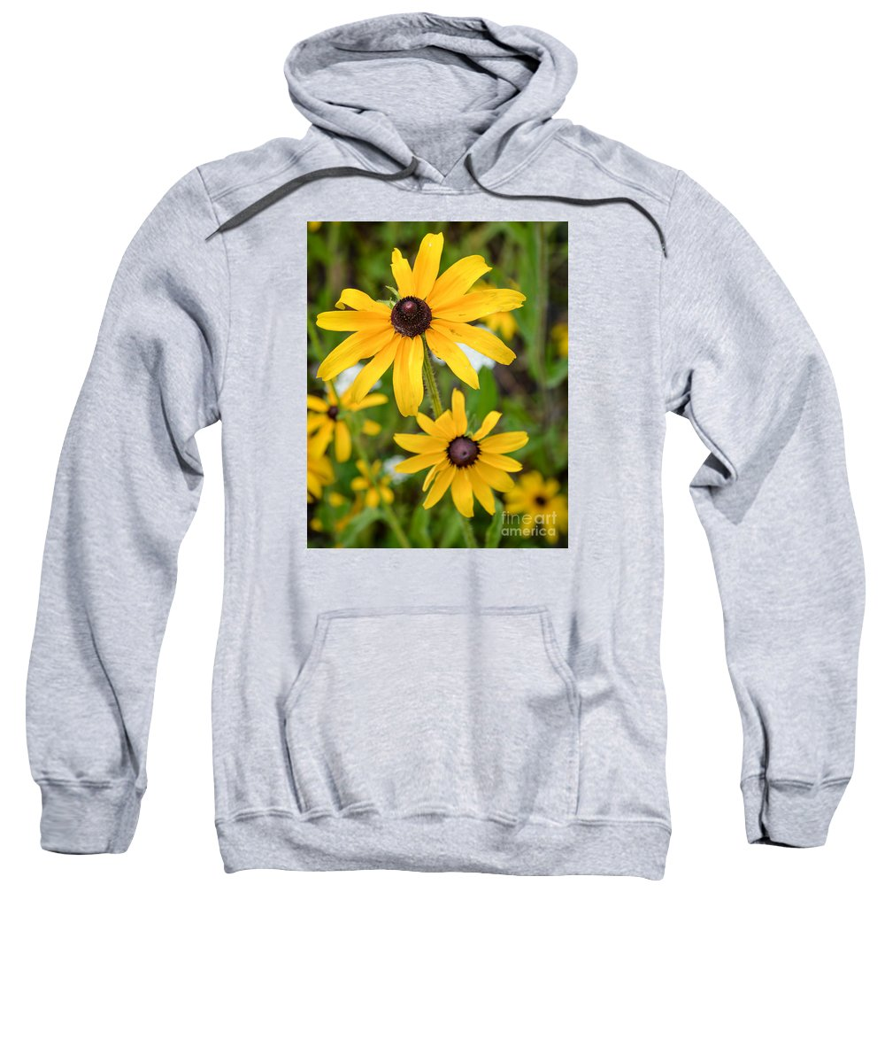 Macro Sweatshirt featuring the photograph Black-eyed Susan by Lisa Kilby