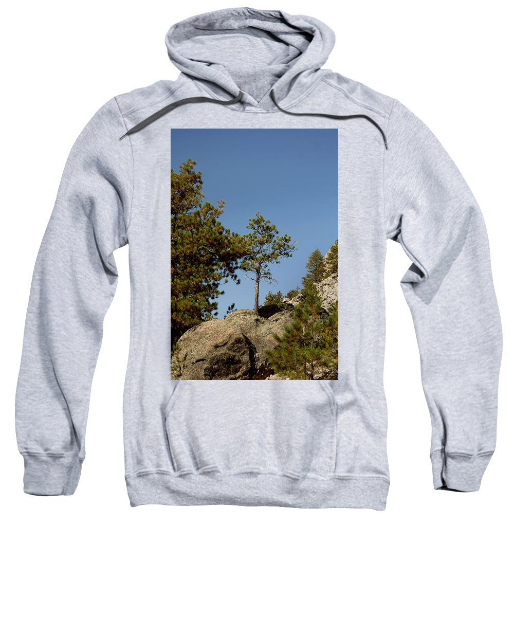 Attraction Sweatshirt featuring the photograph Black Hills Lone Tree by Mike Oistad
