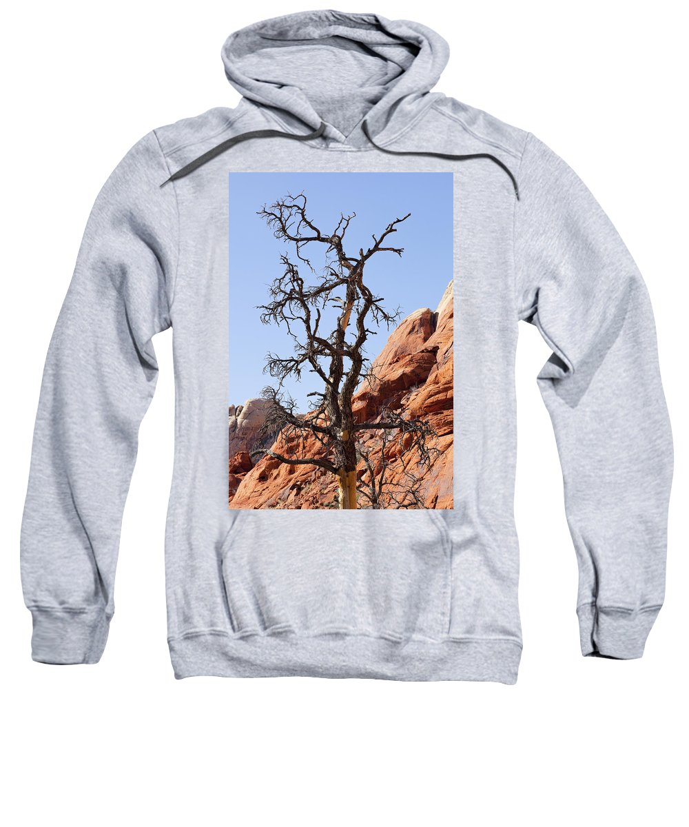 Tree Sweatshirt featuring the photograph Black Wood by Kelley King