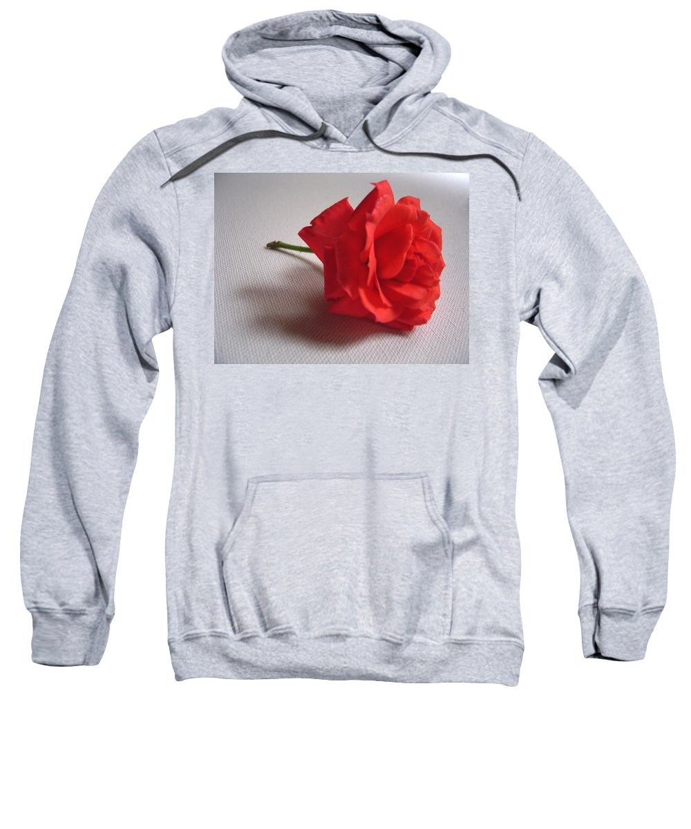 Blood Sweatshirt featuring the photograph Blood Red Rose by Usha Shantharam