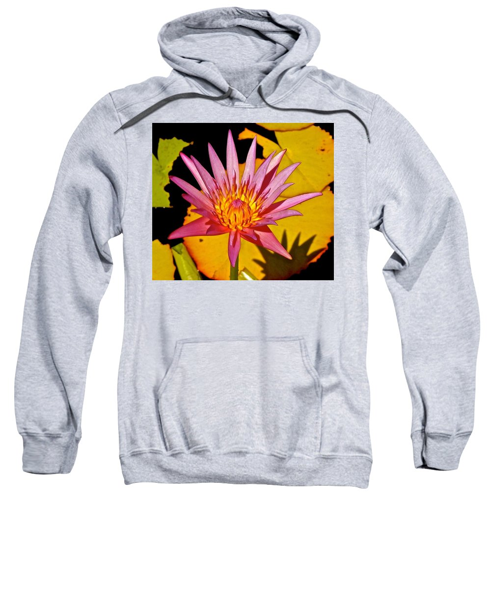Lotus Sweatshirt featuring the photograph Blooming Lotus Flower by Joe Wyman