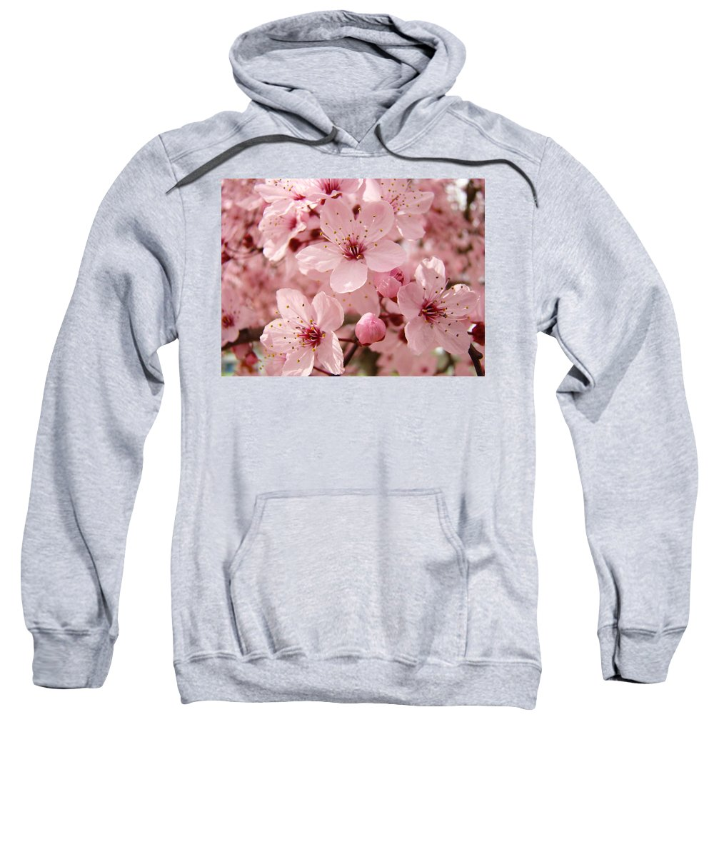 Nature Sweatshirt featuring the photograph Blossoms Art Prints 63 Pink Blossoms Spring Tree Blossoms by Baslee Troutman