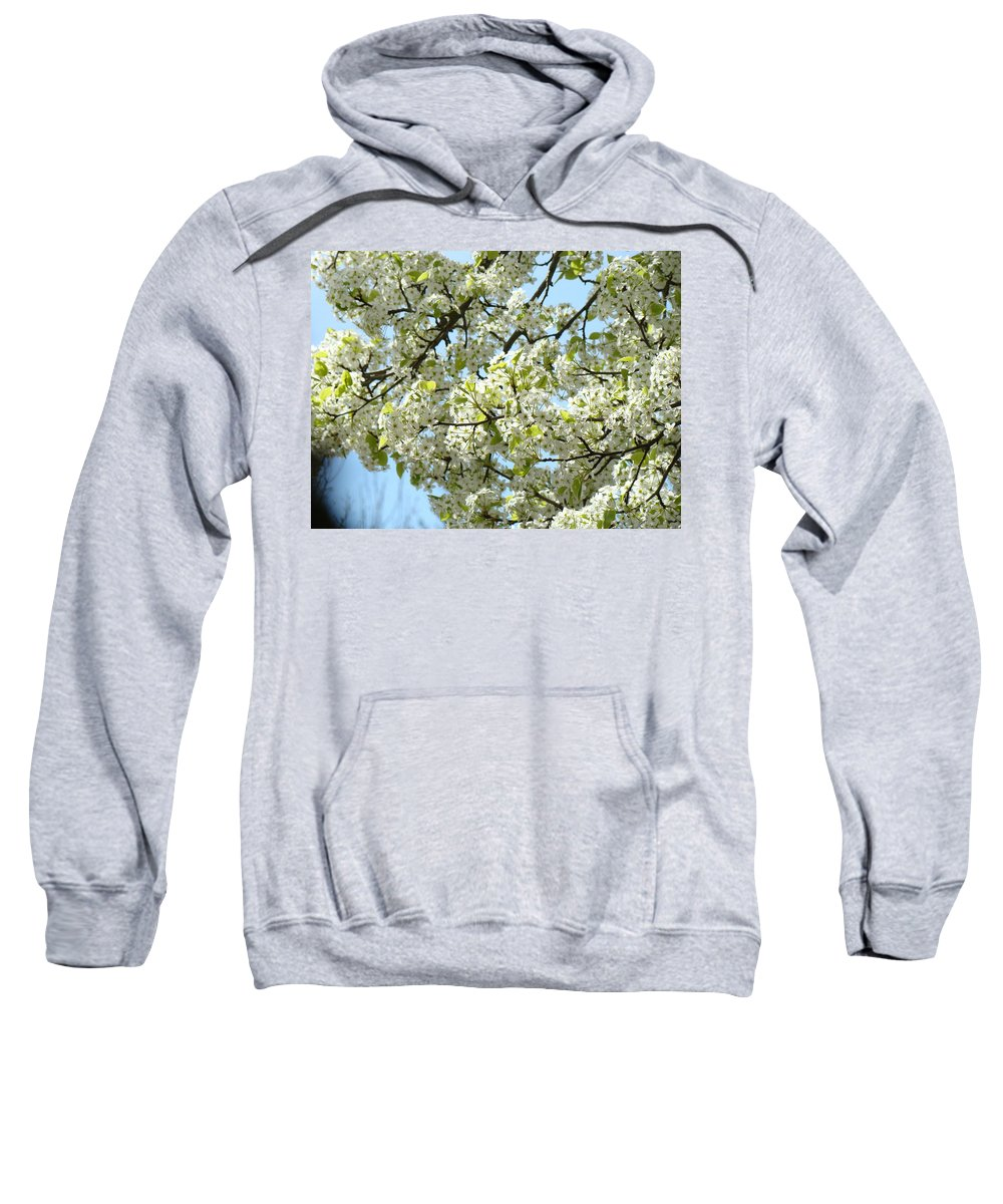 �blossoms Artwork� Sweatshirt featuring the photograph Blossoms Whtie Tree Blossoms 29 Nature Art Prints Spring Art by Baslee Troutman